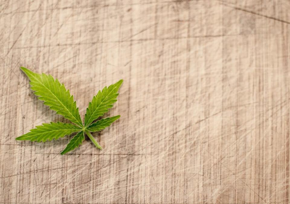 兒網購大麻遭依運輸二級毒品偵辦,委任專業刑事律師答辯!