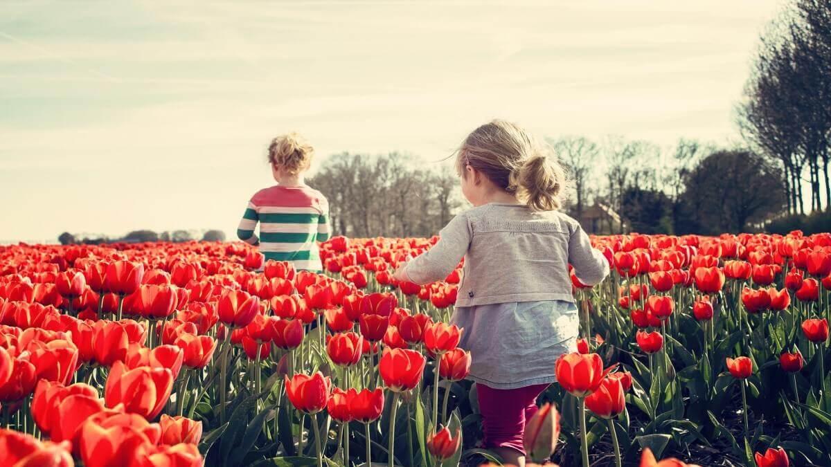兒童遭性侵害怎麼辦?我該怎麼協助孩子?